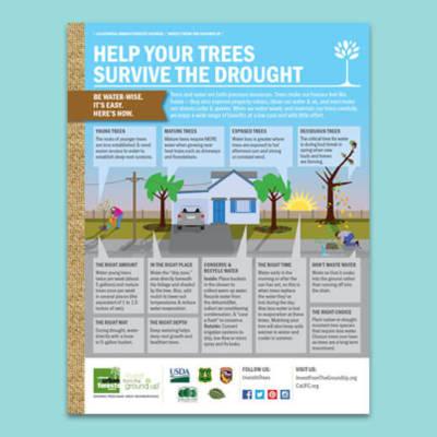 Drought-Infographic-EN