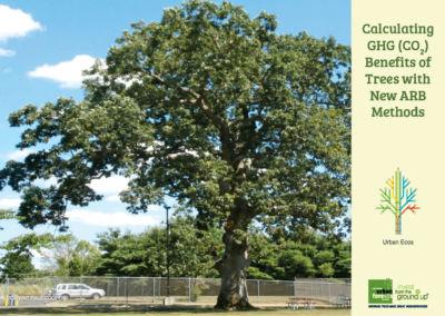 Tree Carbon Calculator